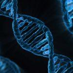 Мисълта променя мозъка, клетките и гените ни